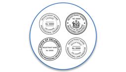 Delaware Professional Seals