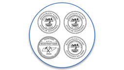 Tennessee Professional Seals